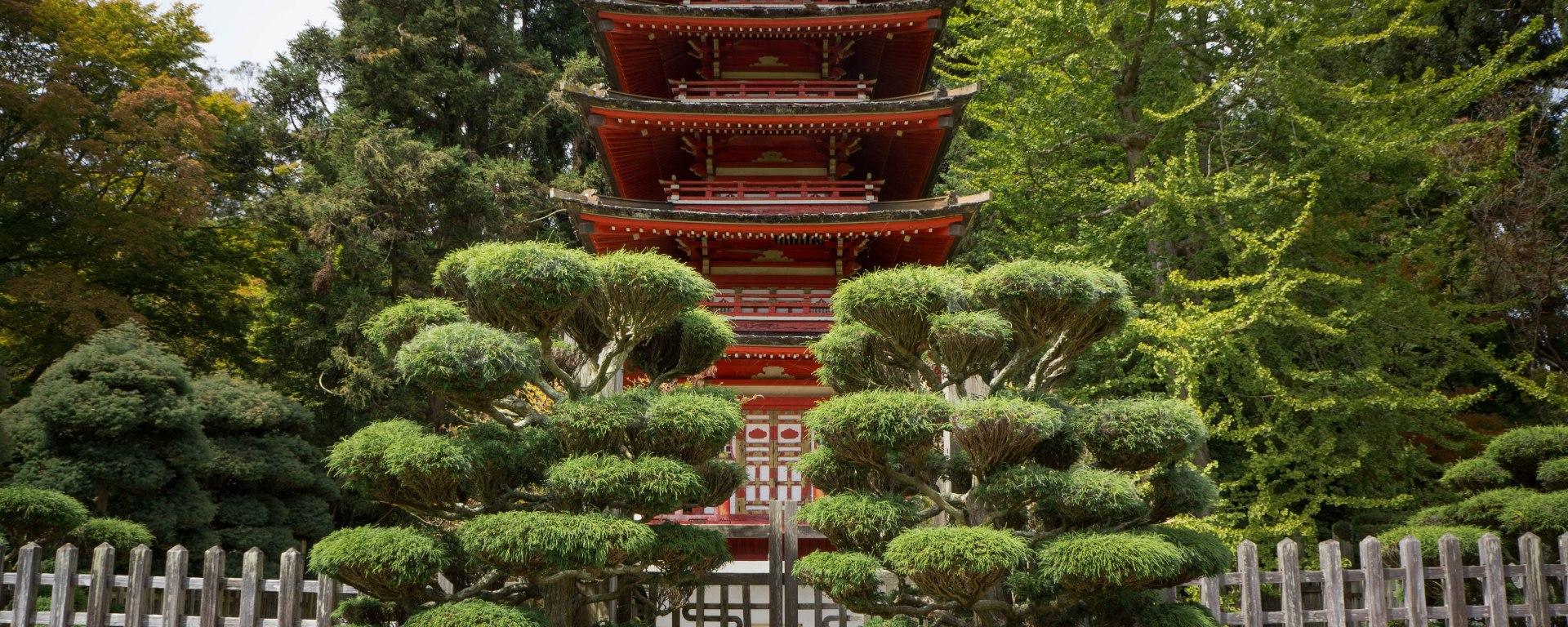 Japanese Tea Garden – DezAri Photography